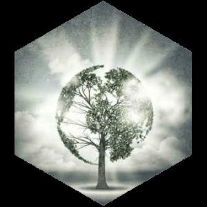 Environmental-300x300